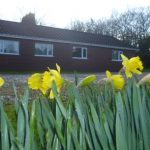Magnolia Lodge exterior view with daffs