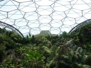 Eden Project, Rain Forest Biome